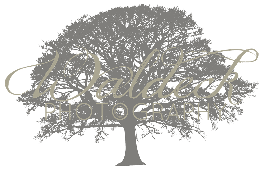 Waldeck Photography